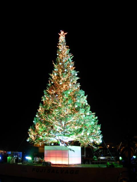 2008/12/22 はこだてクリスマスファンタジー2008 X'masツリー