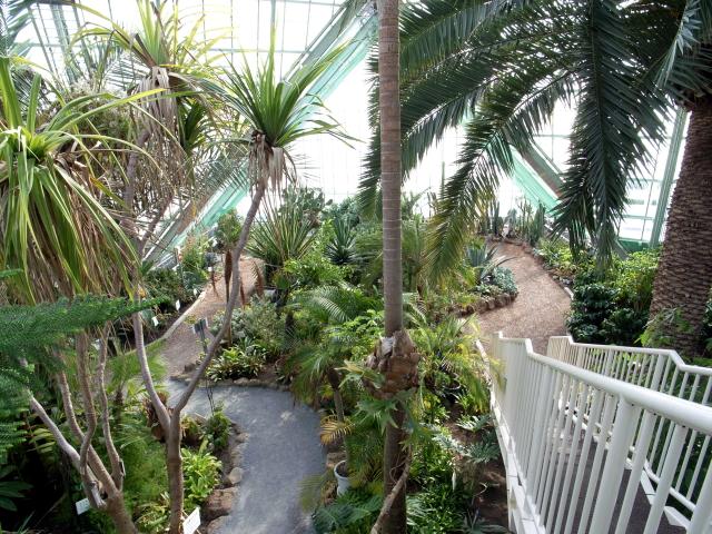 2009/02/22 函館市営熱帯植物園 内部 その1