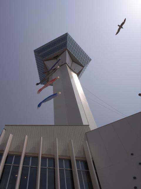 2009/05/01 五稜郭タワーとこいのぼり