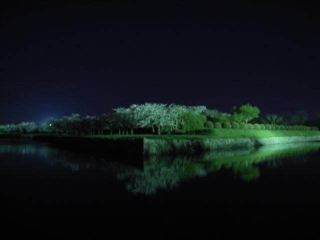 2009/05/04 夜の五稜郭公園のお堀