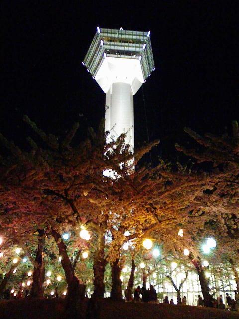 2009/05/04 五稜郭タワーと夜桜
