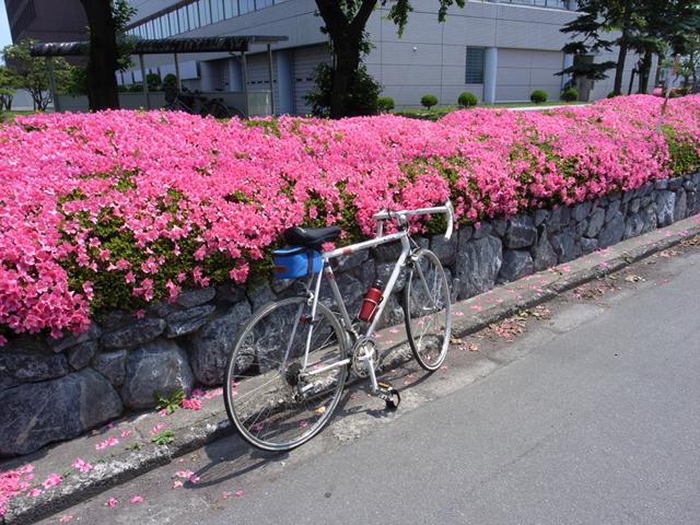 2009/07/05 新川町合同庁舎前