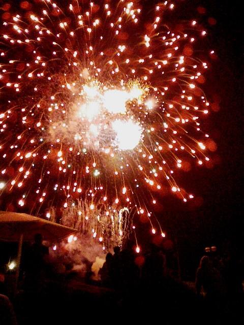 2009/08/29 湯の川温泉いさり火まつり花火大会 熱帯植物園内より