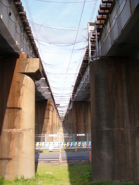 2009/12/27 常磐線利根川橋梁 我孫子側河川敷から望む