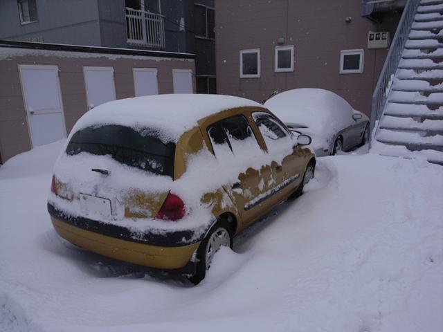 2010/01/01 朝の様子