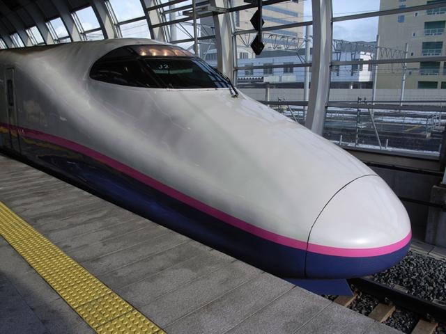 2010/01/06 はやて18号 八戸駅にて