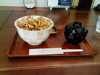 2008/05/22 蕎麦だいにんぐcocolo かき揚げ丼
