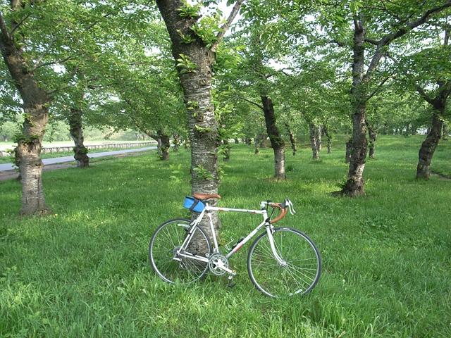 2011/06/11 五稜郭公園にて