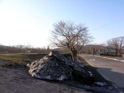 2008/03/22 大野川河川敷(1)