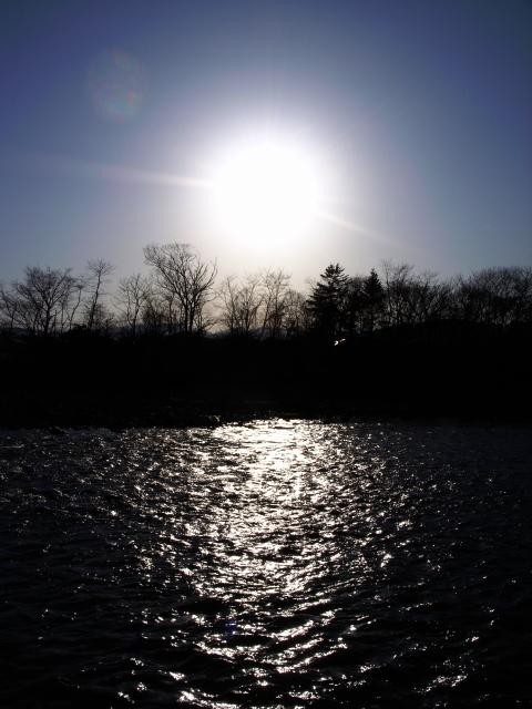 2008/03/22 大野川河川敷(2)