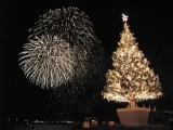 061210 はこだてクリスマスファンタジー ツリーと花火