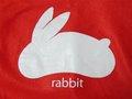 060129_i_rabbit